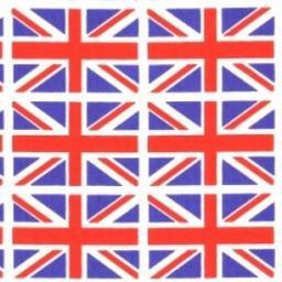 Union Flag cotton poplin
