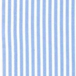 Blue stripe cotton poplin