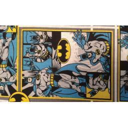 Batman cartoon by DC comics