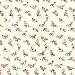Ivory + pink rose cotton poplin
