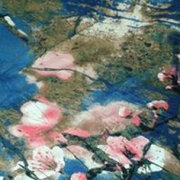 Blue digital floral Jersey