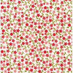 Red floral poplin.jpg