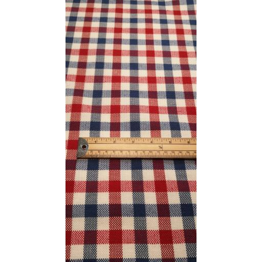 Red, white and blue check canvas