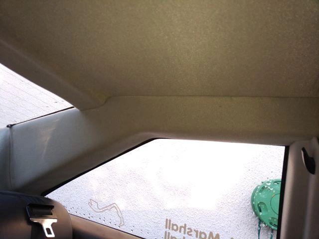 Lotus headlining in the car